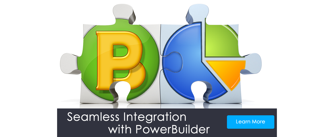 Seamless Integration with PowerBuilder Applications